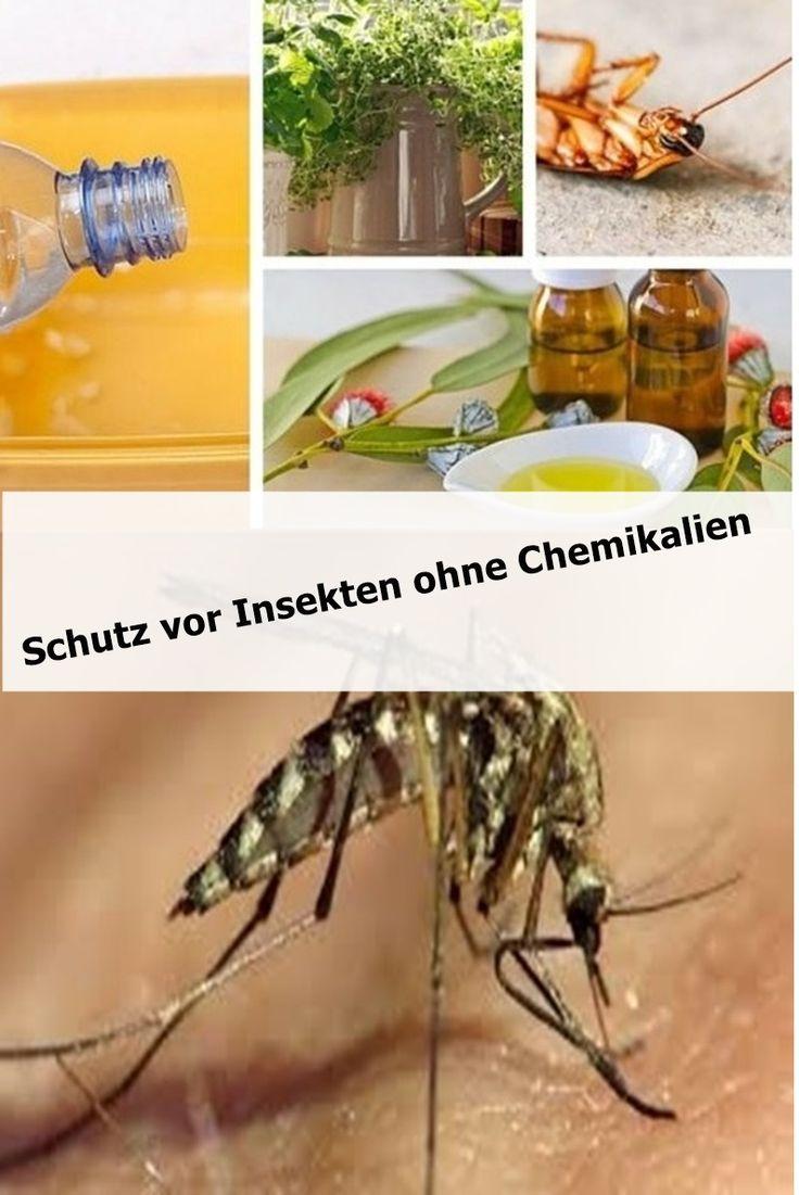 Schutz vor Insekten ohne Chemikalien