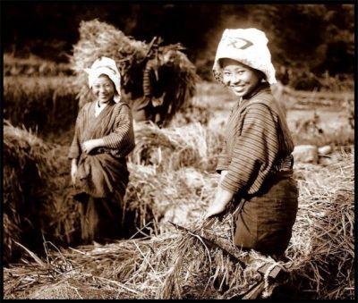 明治時代の農業 政府が政治の仕組みを改めたり、新しい産業を興したりするためにはたくさんのお金がかかります。 そのうちの90%は農民が納めている年貢で賄われていました。 新しい政府になっても江戸時代と同じ、米で納めるという方法で年貢を納めていました。 運ぶにも手間がかかり、米の取れ高によって政府の収入も変動します。 それでは計画を立てて政治をすることが出来なかったため、新しい税の仕組みを作らなければならないと考えました。 その頃、ヨーロッパの進んだ国ではもう、年貢のような税はやめお金で納める税金になっていました。 税を、お金で払うためには農民が自分で作ったものを自由に売ることが出来なくてはなりま…