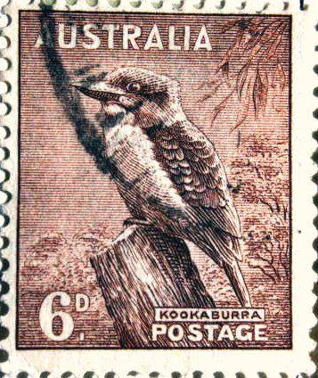 australian stamp - kookaburra