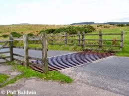 Image result for cattle grid drainage