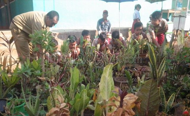 Apotek Hidup di SD Cicadas Mati Akibat Kekeringan www.heibogor.com