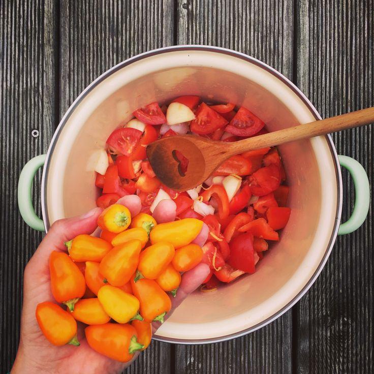 Die letzten Chillis aus Mum's Garten dürfen in die Paprika-Paradeismarmelade http://www.die-kuecheninsel.at/paprika-paradeis-marmelade/