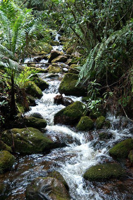 Santuario de Iguaque