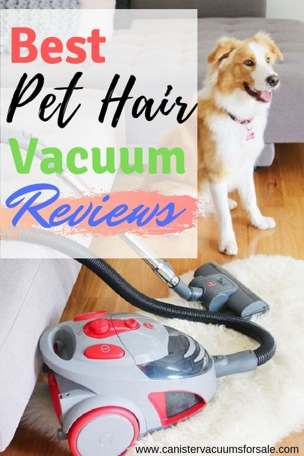 Top 5 Best Rated Canister Vacuum Cleaners Best Vacuum Pet Hair Vacuum Vacuums