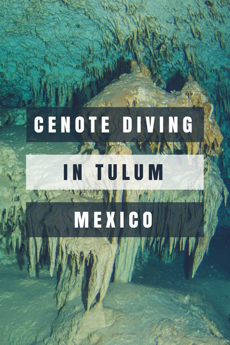 Cenote Diving in Tulum Mexico - Best Scuba Diving In The World. Fresh Water Scuba Diving. Things to Do in Tulum. Cenotes Yucatan Natural Caves. tulum mexico things to do in. MexiDivers. cave diving mexico . Cavern Diving. Tulum Sink Holes. Day Trip From T