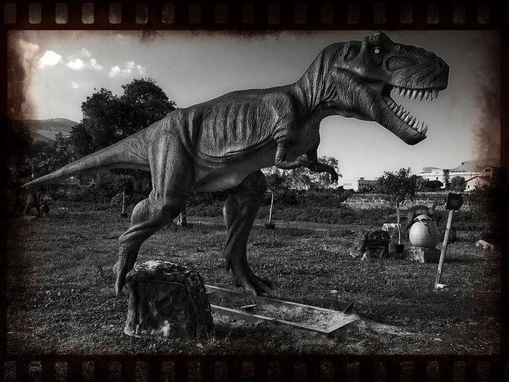 Il grande e feroce Tyrannosaurus Rex vi aspetta oggi a Villa Lampedusa, via dei Quartieri 104, a Palermo di mattina dalle 10:30 alle 13:30 e nel pomeriggio dalle 16:00 alle 18:00