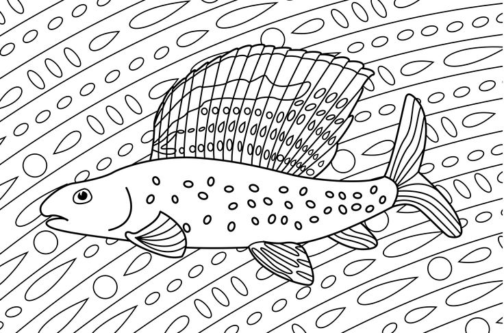 Creating and writing stories is one activity driving my passion and excitement. I also love animals, so designing educational material or artwork around creatures I'm interested in also thrills me. This one is a colouring page of an Arctic Grayling, a fish that swims the rivers of my homeland. It may be little more than a for-fun project, but I still think it was worth taking the time to make it. What sorts of activities get you feeling excited?