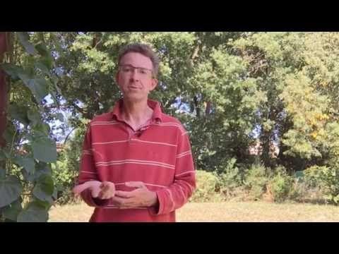 """La méthode vidéo """"Comment obtenir une bonne terre au potager"""" •…"""