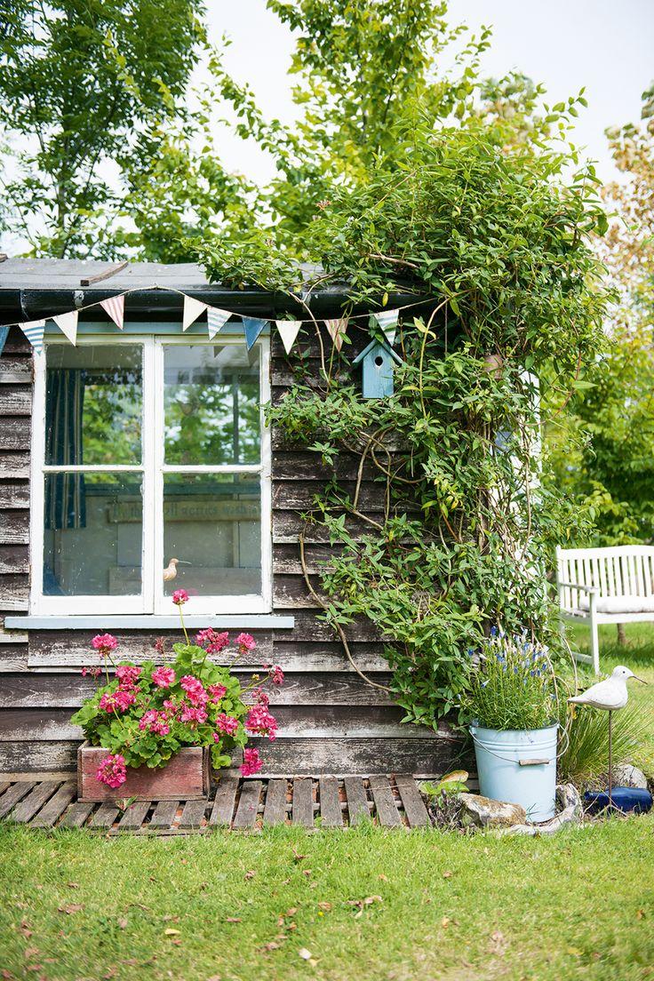 Garden shed exterior