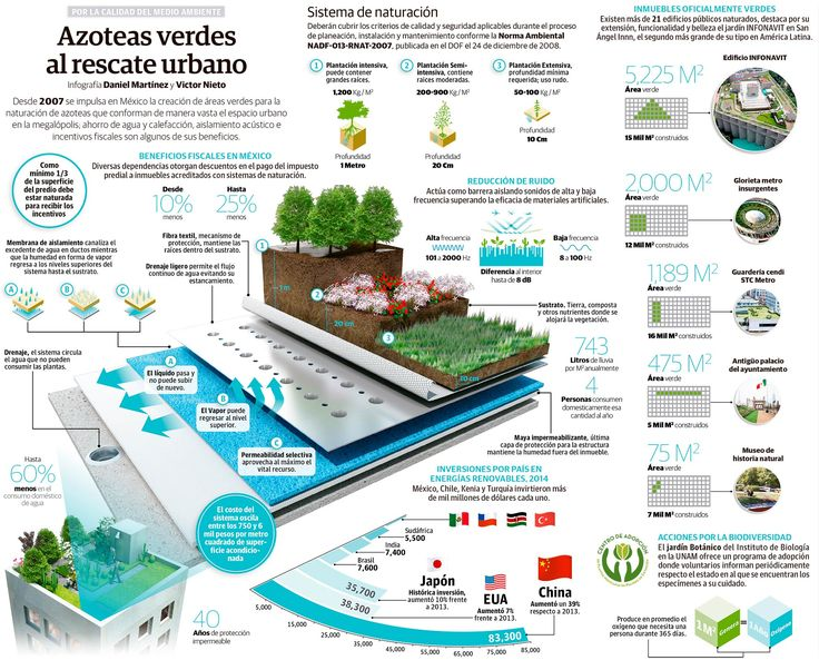 Azoteas verdes al rescate urbano - INVDES