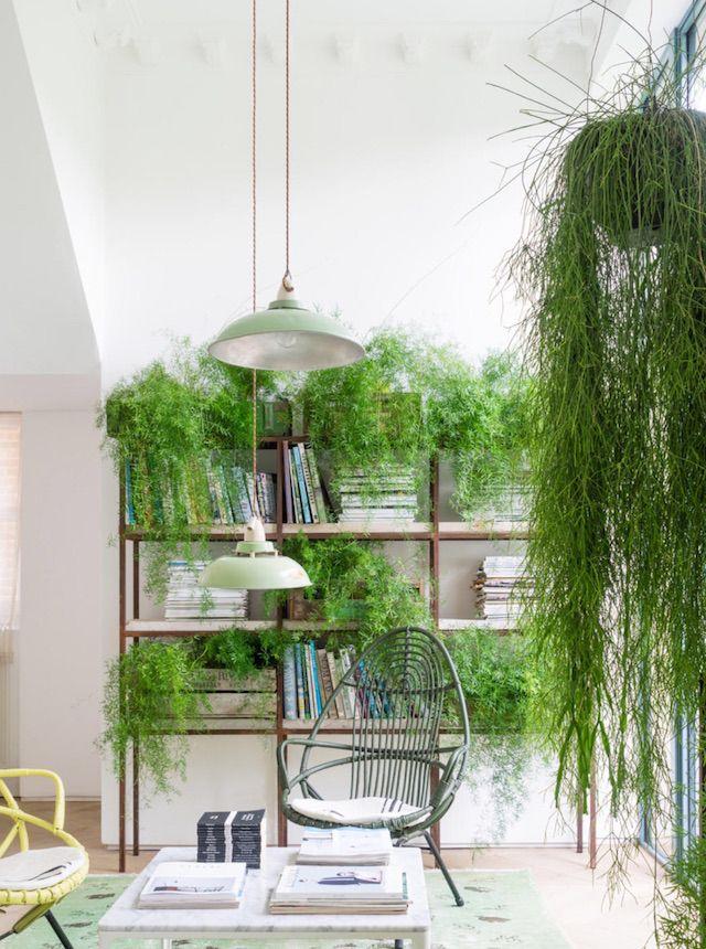 green interior design. Home Office tem mesa de cavalete  cadeira ferro e varal com esp cies plantas variadas Verde Pinterest Plants Room and Apartments