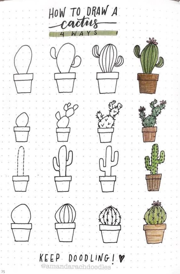 How To Draw A Cactus First Grade Bullet Journal Inspiration