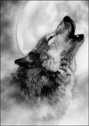 wolf moon drawing - Google Search