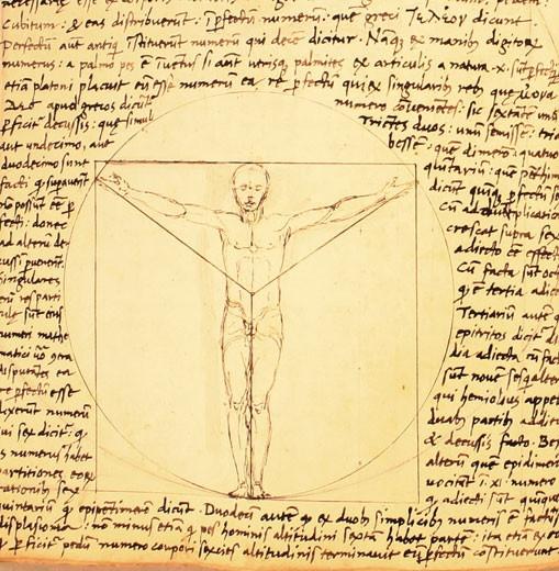 Leonardo Da Vinci: Andrea Da, Man Drawings, Giacomo Andrea, Vitruvian Man, Leonardo Da Vinci, Ferrara Work, Da Ferrara, Leonardo Vitruvian, Manuscript Includ