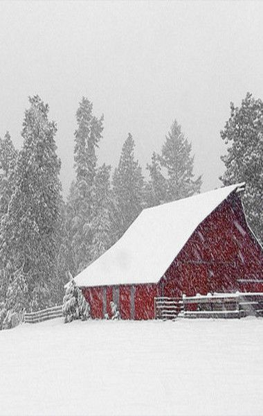 Barn In Snow Storm