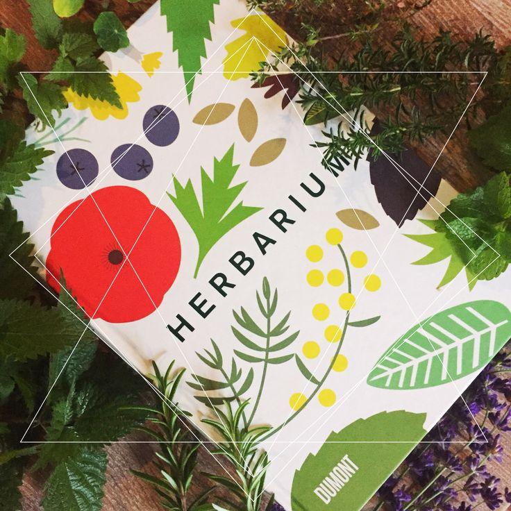 Hallo meine Lieben!  Heute mal ein Beitrag über ein Sachbuch von mir! Ich bin ja eine kleine Hobbygärtnerin und ein echter Kräuterfan. Nein, nicht nur als Tee, sondern auch als lebendige Pflanze :-) Deswegen tummeln sich schon die handelsüblichen Kräuter wie Lavendel, Rosmarin, Bohnenkraut und Thymian in unserem Garten.   #5/5 #Anbauen #Brennessel #Caz Hildebrand #Dumont Verlag #Grafi #Illustration #Kochen #Kraut #Kräuter #Rosmarin #Thymian #Trinken #Wirkung