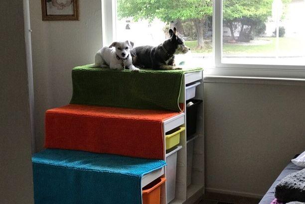 Diy Dog Window Perch With Steps Ikea Hackers Dog Window Dog