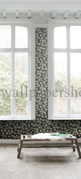 Wallpapers :: Romantic :: Silence :: Silence Lizio Leaf No 7286 - WallpaperShop
