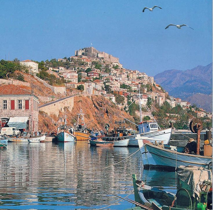 The town of Molivos (also known as Mythimna) on the Greek island of Lesbos, just off the coast of Turkey. The whole island is absolute magic.
