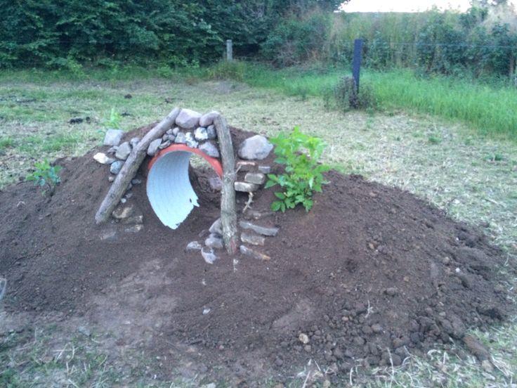 Bakke til salaten og mineraler. Der er plantet hyldebær på bakken, og den dækkes med sten og grene.