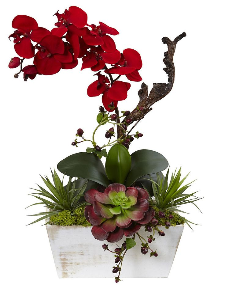 The Red Orchid & Succulent Silk Flowers with Planter will make a warm and welcoming addition to your home or office. Arrives in a contemporary whitewash wood planter. Overall Dimensions: 21 inches hig