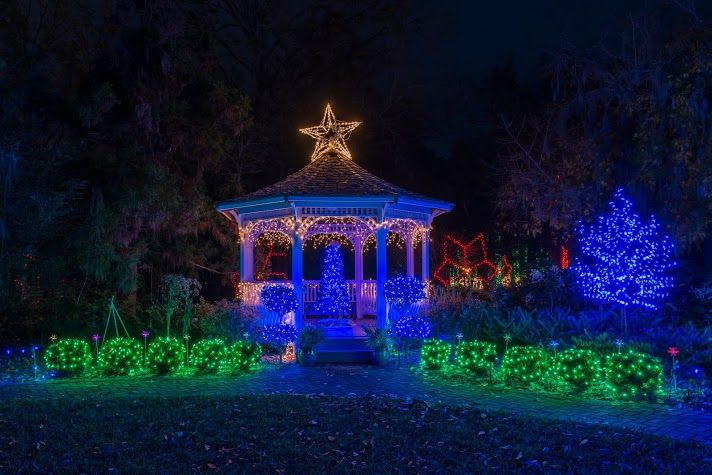 20 Best Holiday Lights Images On Pinterest Holiday Lights Xmas Lights And Swans