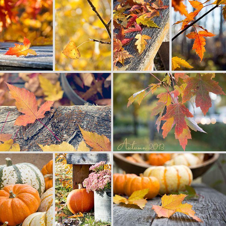 fall template word