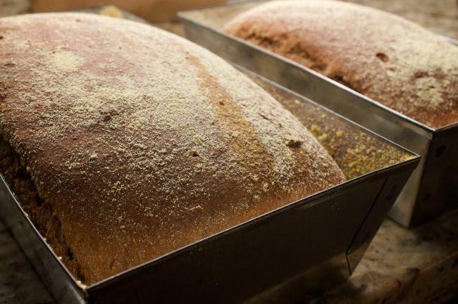 pão australiano - pão rustico
