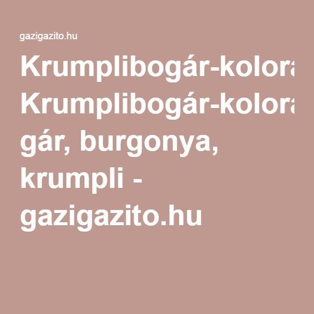Krumplibogár-kolorádóbo gár, burgonya, krumpli - gazigazito.hu