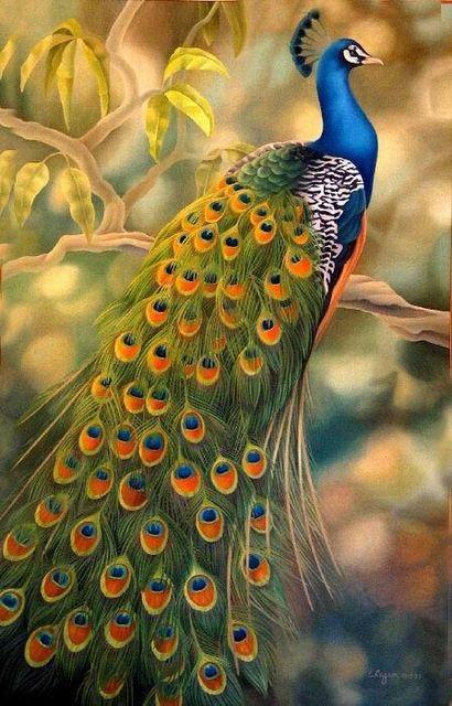 Envío libre 100% pintado a mano pintura al óleo en la lona gloden pavo real