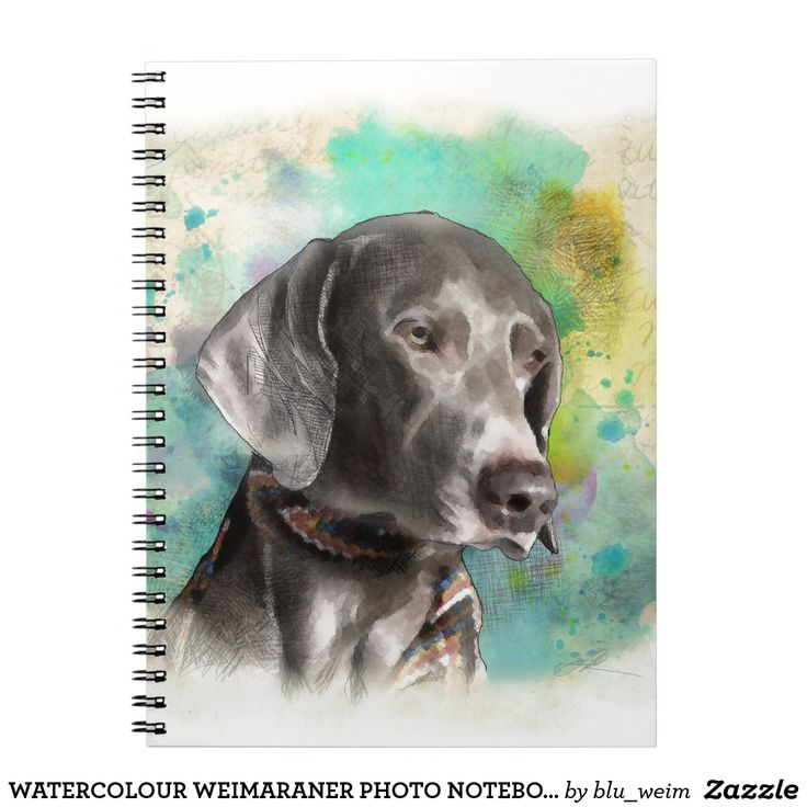 WATERCOLOUR WEIMARANER PHOTO NOTEBOOK