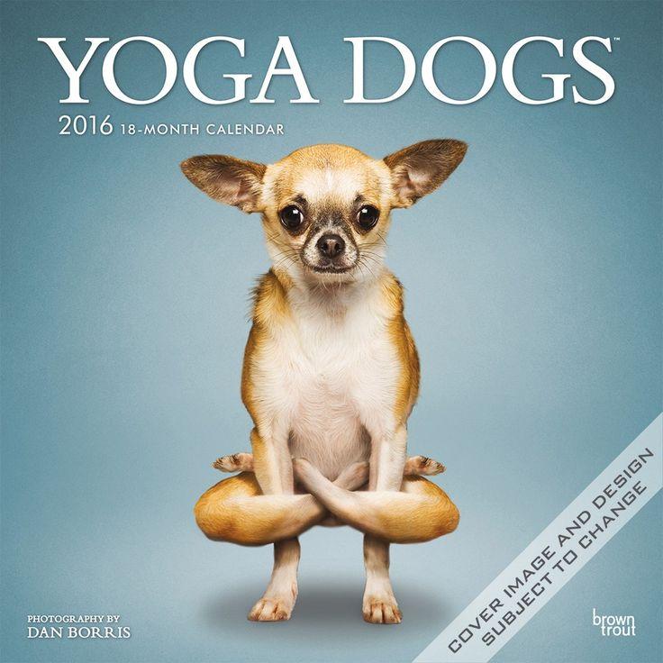yoga dogs calendar 2016