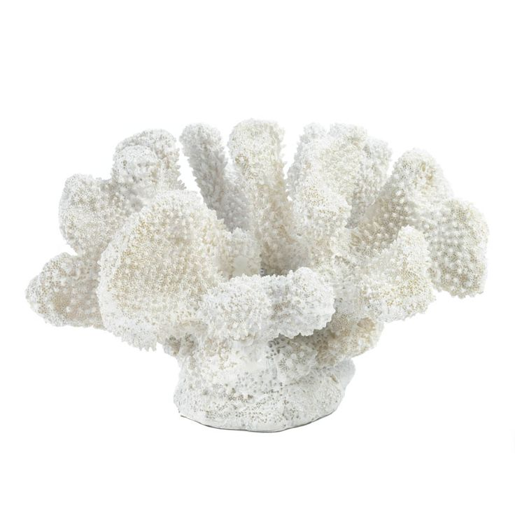 "A little bit of oceanfront style goes a long way when it comes to room accents. This pretty coral-like statue features fantastic texture and a fresh white finish that will liven up your space.  7¾"" x 6½"" x 5½"" high.  Polyresin.  $29.95"