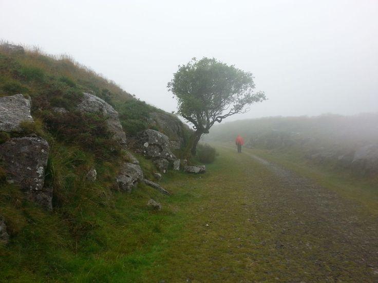 ještě pořád Dartmoor