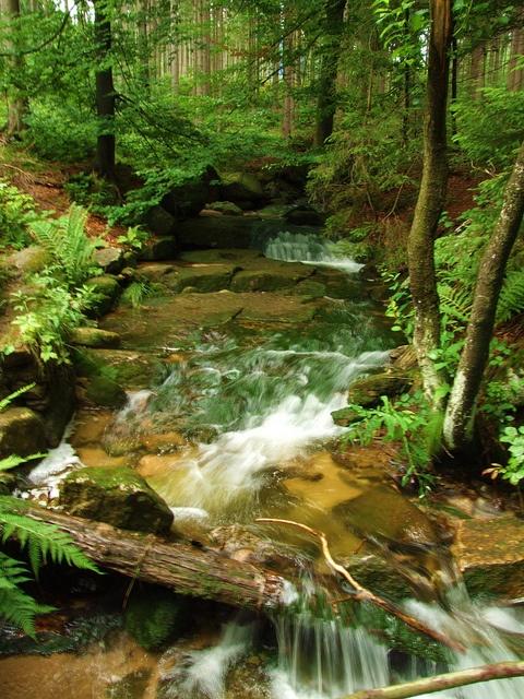 Poland - stream in the Karkonosze Mounains by Agnieszka Piatkowska, via Flickr