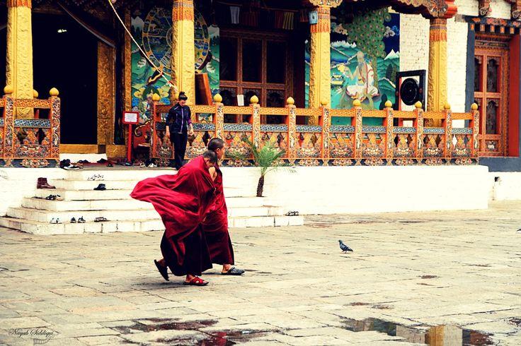Punakha Dzong of Last Shangrila - Travel | Travel photography, India, Pune