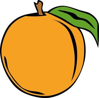 Πορτοκάλι, Φρούτα, Βρώσιμα