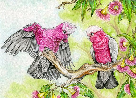 Childrens painting - kids wall art - cockatoo painting - pink and grey galahs - Australian birds - 8.5 x 12 inch print via Etsy