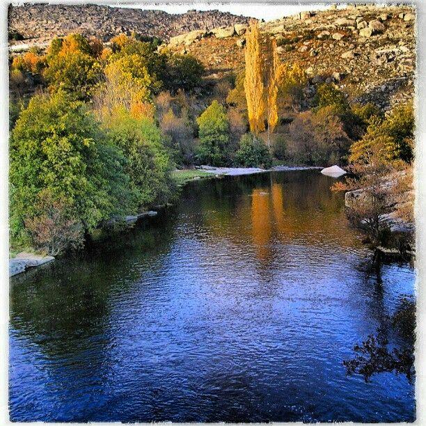 Río Alberche a su paso por la provincia de Ávila, job bella estampa otoñal :-) Photo by isabelmartinj