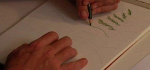 How to Draw snowy pines with colored pencil « Drawing & Illustration