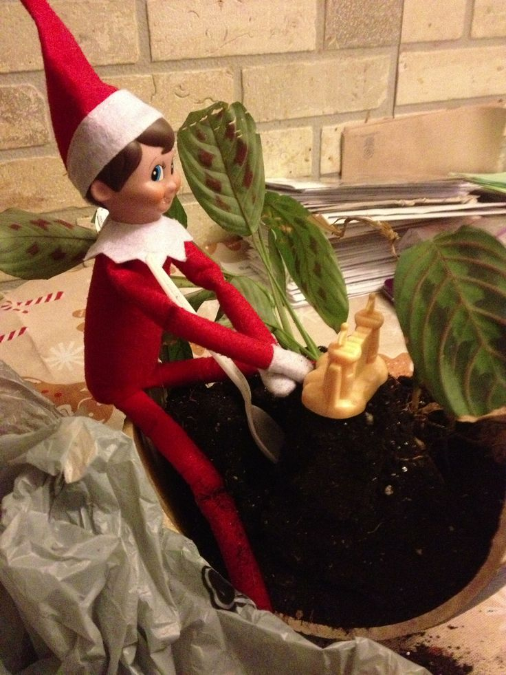 Our Elf on the Shelf seems to take pleasure in my broken plant potter! Digging in the dirt and building castles! Silly Elvis!