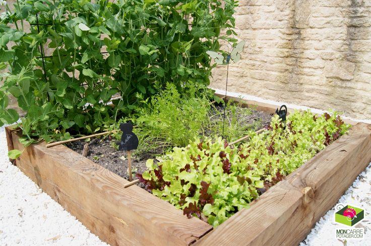 17 best images about carr potager on pinterest gardens raised beds and vegetable garden. Black Bedroom Furniture Sets. Home Design Ideas