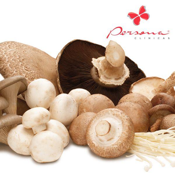 Altamente nutritivos e com pouca gordura, os cogumelos são ricos em proteínas, fósforo, vitaminas do complexo B, ácido fólico, fibras.