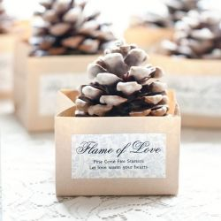 DIY Pinecone Fire Starters make creative and beautiful favors.