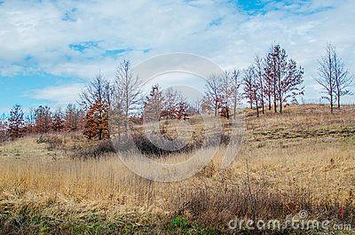 Landscape of Transylvania`s Hills on a sunny day