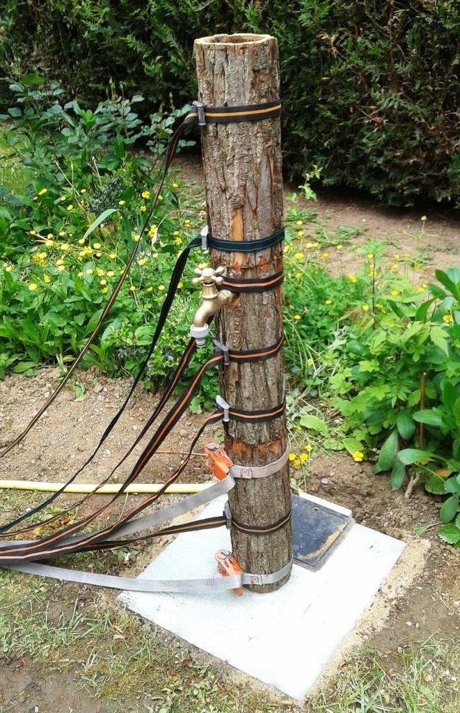 6) Sanglage des écorces d'arbre pour collage