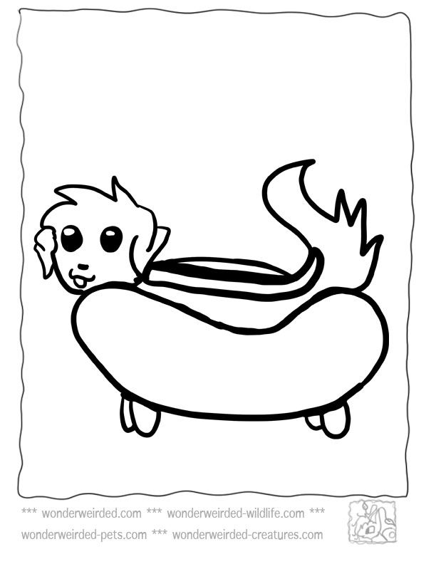 It's just a picture of Bright Hot Dog Coloring Pages