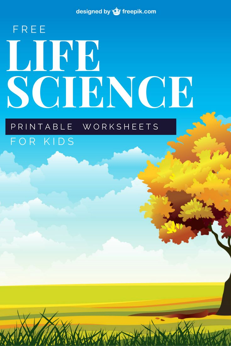 35 best living things elementary life science images on a wealth of free printable worksheets with lots of different subjects robcynllc Image collections