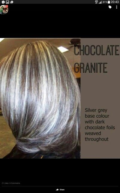 101 best white highlights images on pinterest hairstyle silver looks like my new colors light ash blonde and steel gray highlights in dark brown hair i love it urmus Gallery