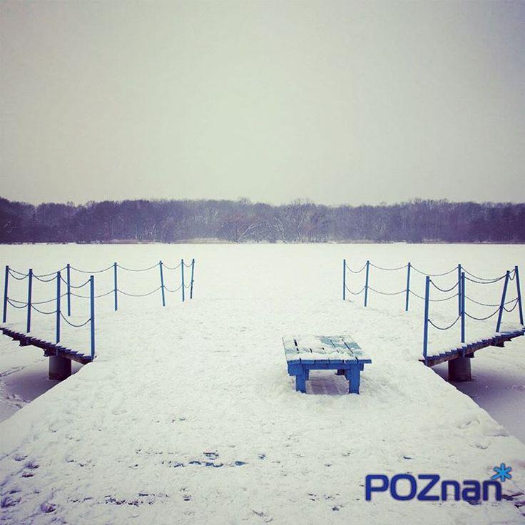 Zimowa Rusałka [fot. Ł. Kuszel]